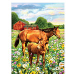 15868 - Horse in Field Paint by Numbers Set (PJS81)
