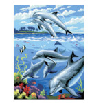 15885 - Dolphins Paint by Numbers Set (PJS24)