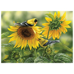 CH Sunflowers and Goldfinches - 1000 Piece Puzzle