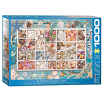 16008 - Eurographics Seashell Collection 1000 Pc Puzzle (6000-5529)