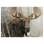 9485 - CH Bull Moose 500 Piece Puzzle
