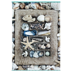 14819 - Schmidt Treasures of the Sea 500pc Jigsaw Puzzle