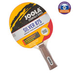Joola Essentials Silver Bat